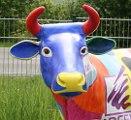 Kopf einer der Kühe von C. Kreul