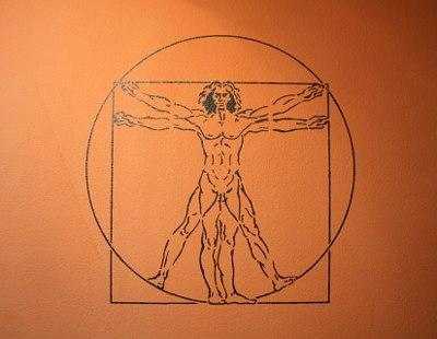 Leonardo da Vinci's vitruvianischer Mann als Wandschablone